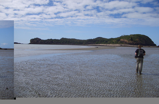 Cape Hillsborough National Park by Rob and Stephanie Levy on Flickr