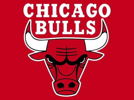 Jordan Chicago Bulls Logo Chicago Bulls Logo